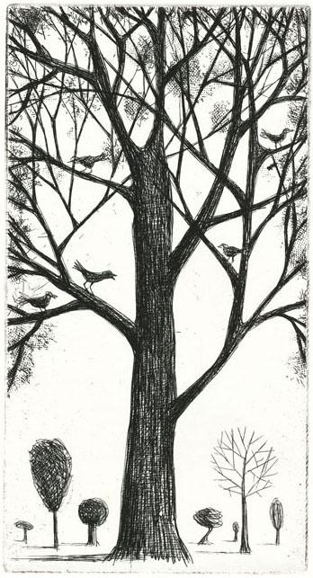 guido pigni birds etching